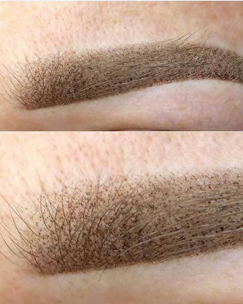 ombre powder brows dc