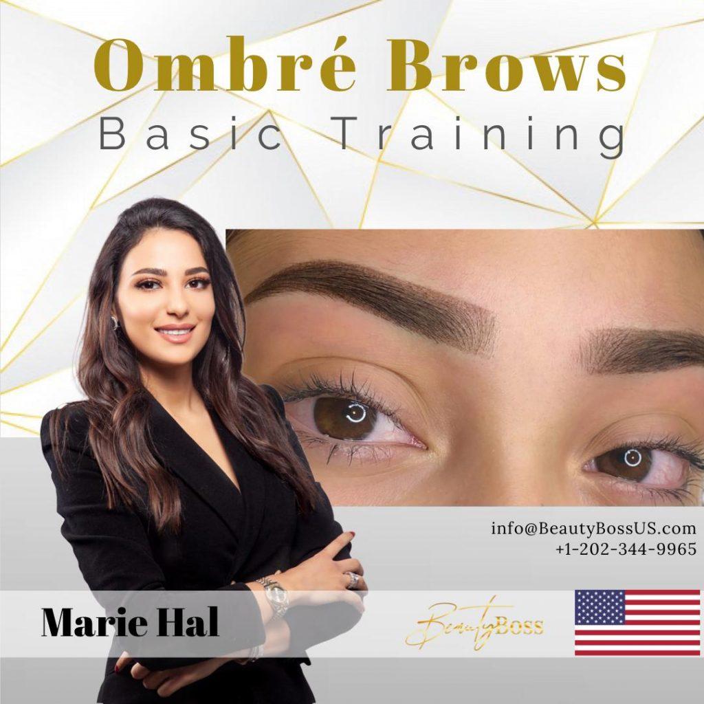 Ombre brows powder brow trainig